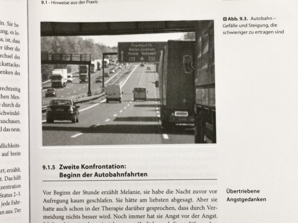 """Aus dem Ratgeber """"Keine Angst mehr hinterm Steuer"""": Kapitel 9, Angst vor Panikattacken auf der Autobahn. Die Angst annehmen, das Vermeiden vermeiden"""